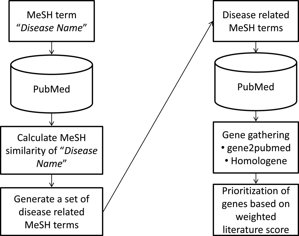 A Novel Method For Gathering And Prioritizing Disease Candidate