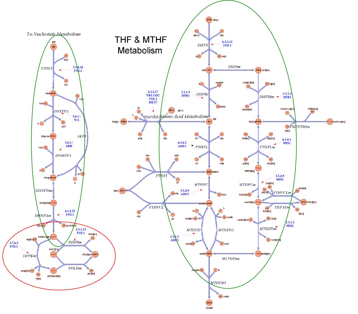 Automation Of Gene Assignments To Metabolic Pathways Using High Mq 6 Circuit Diagram Figure 5
