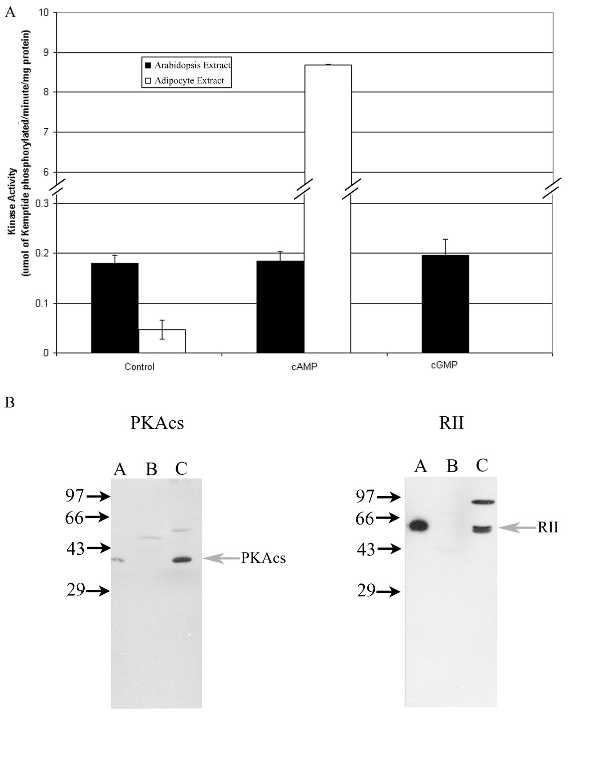 Cyclic Nucleotide Binding Proteins In The Arabidopsis Thaliana And Diagrams On Improperly Wiring Three Way Switches Eee Community Figure 4