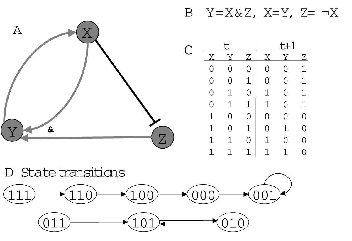 Current Approaches To Gene Regulatory Network Modelling Bmc State Diagrams Are A Powerful Mechanism For Formalizing Dynamics That Figure 9