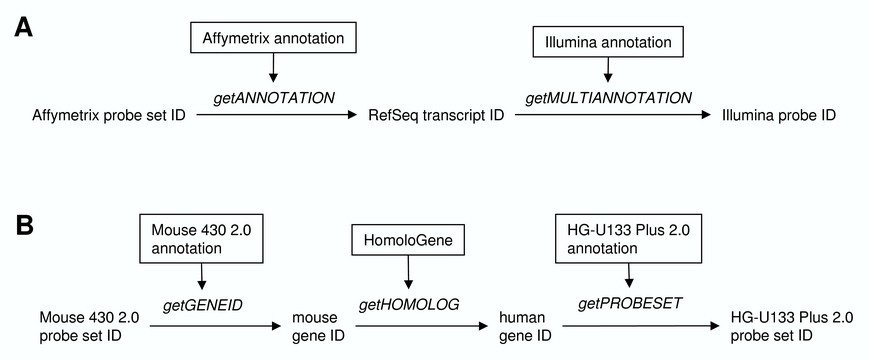 Cross Species And Cross Platform Gene Expression Studies With The