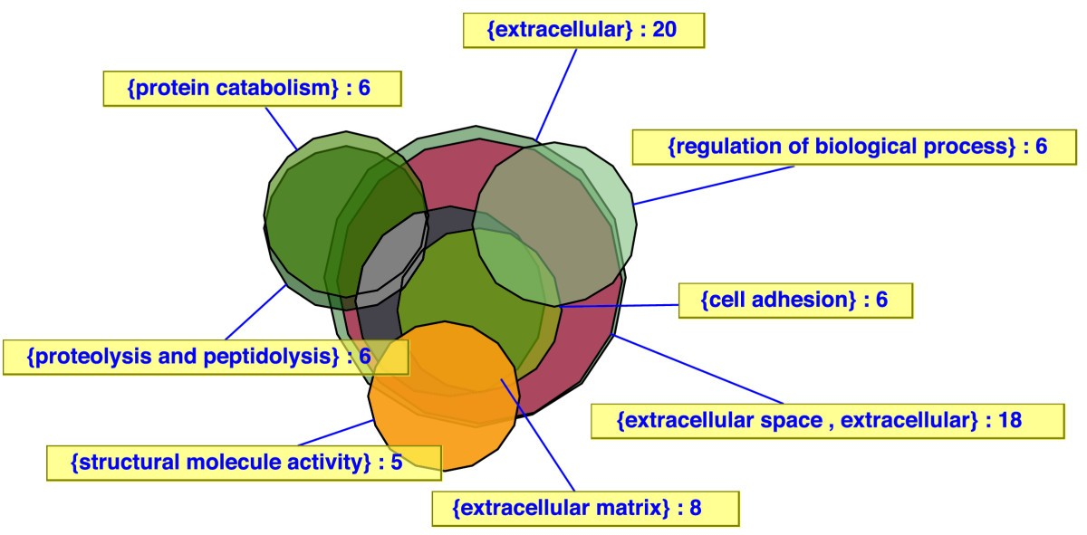 Vennmaster Area Proportional Euler Diagrams For Functional Go