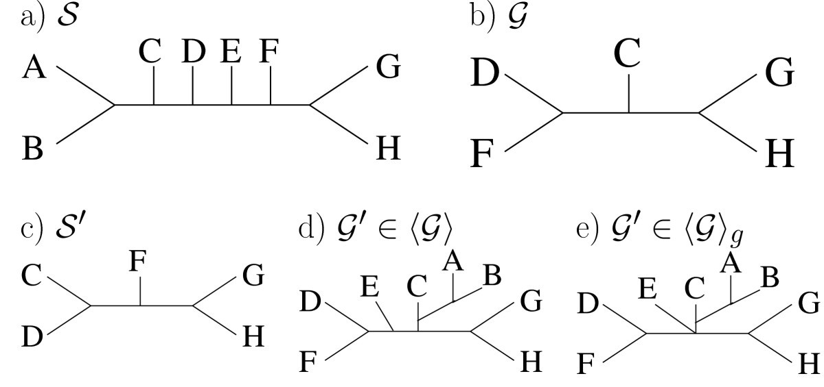 Split based computation of majority rule supertrees bmc figure 1 ccuart Gallery