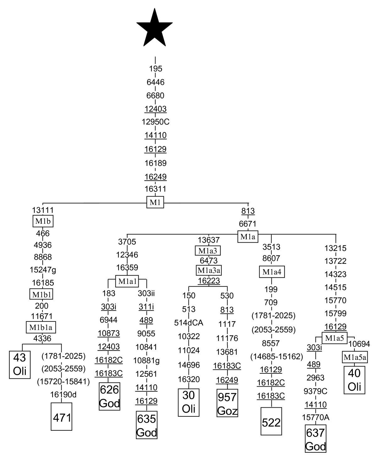 Mitochondrial Dna Structure In The Arabian Peninsula Bmc