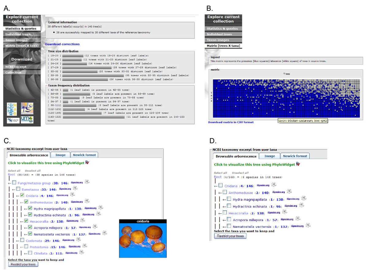 Phyloexplorer A Web Server To Validate Explore And Query Hydra Cnidaria Diagram Images Pictures Becuo Figure 3