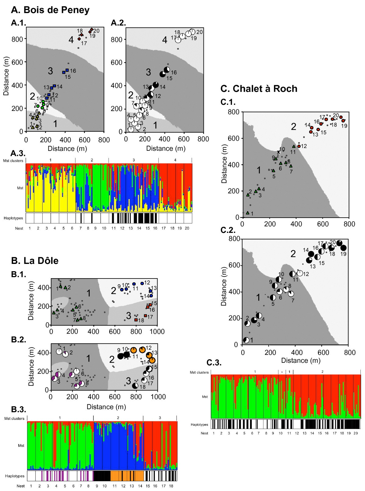 Genetic Clusters And Sex Biased Gene Flow In A Unicolonial Formica Voronoi Diagram Indefinite Seven Figure 1