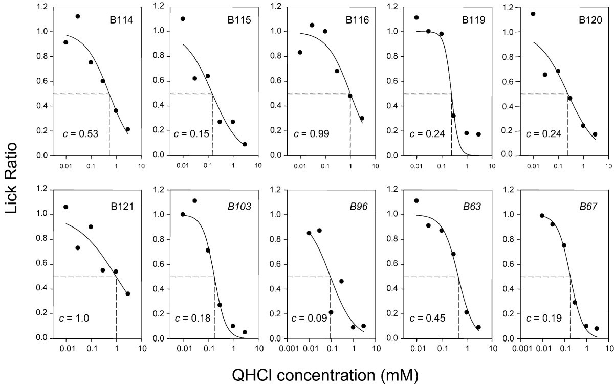 Inbred Mouse Strains C57bl 6j And Dba 2j Vary In Sensitivity To A Salt Taster Circuit Figure 1