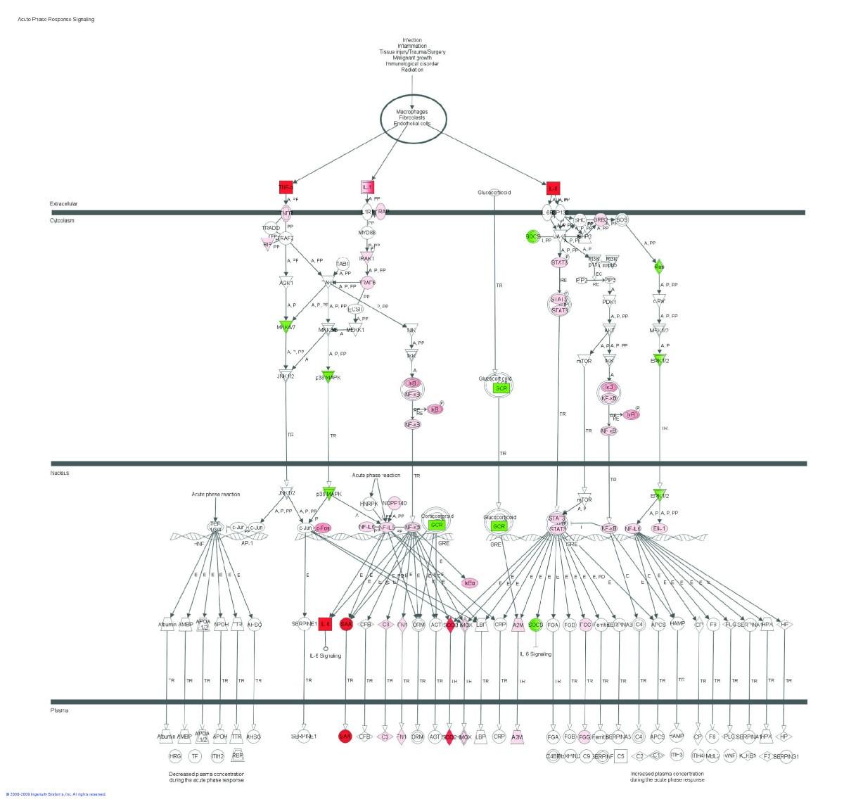 Gene Network And Pathway Analysis Of Bovine Mammary Tissue Ledcircuitcalculator Circuit Playground 163 Resistor Power Figure 2