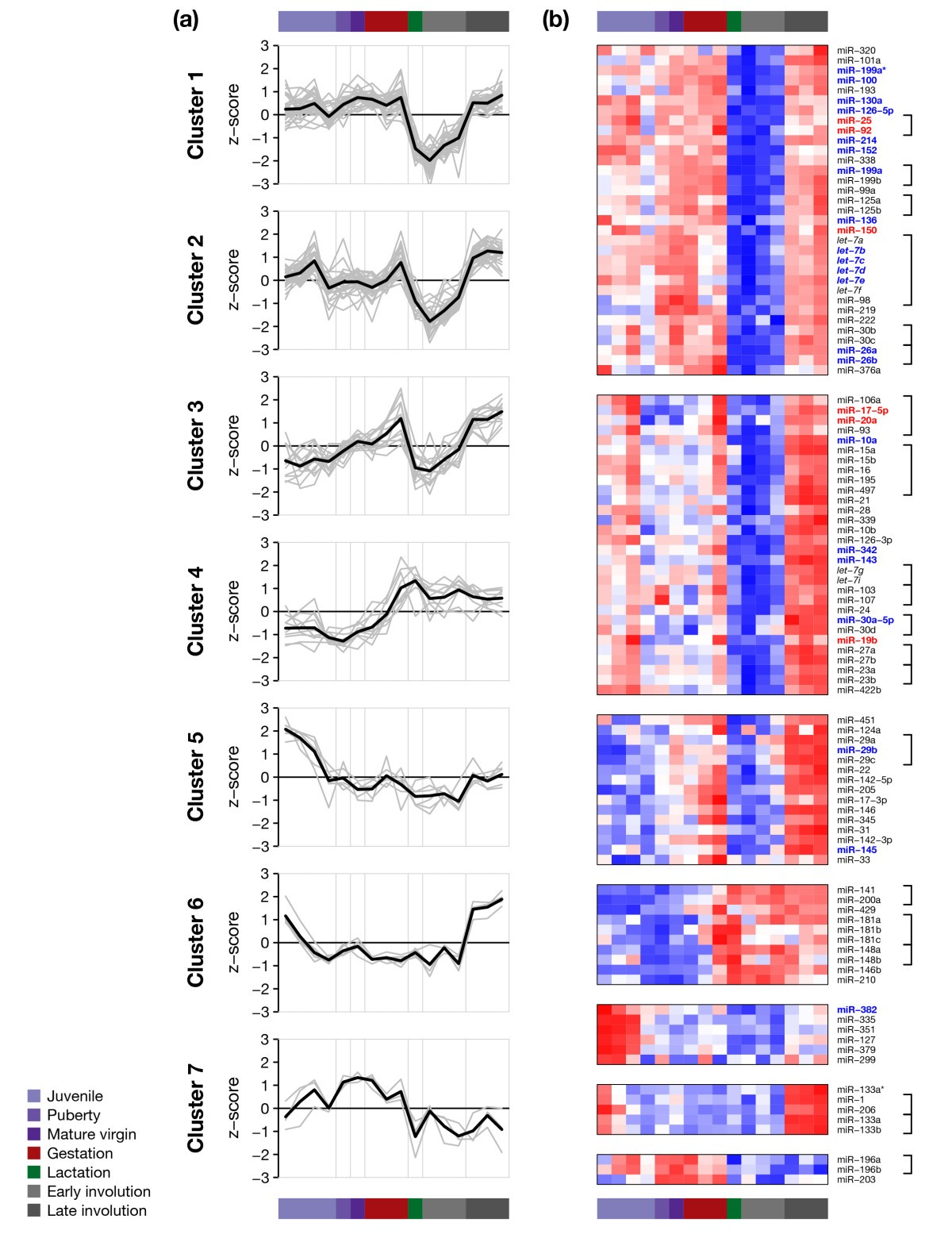 Characterisation of microRNA expression in post-natal mouse mammary