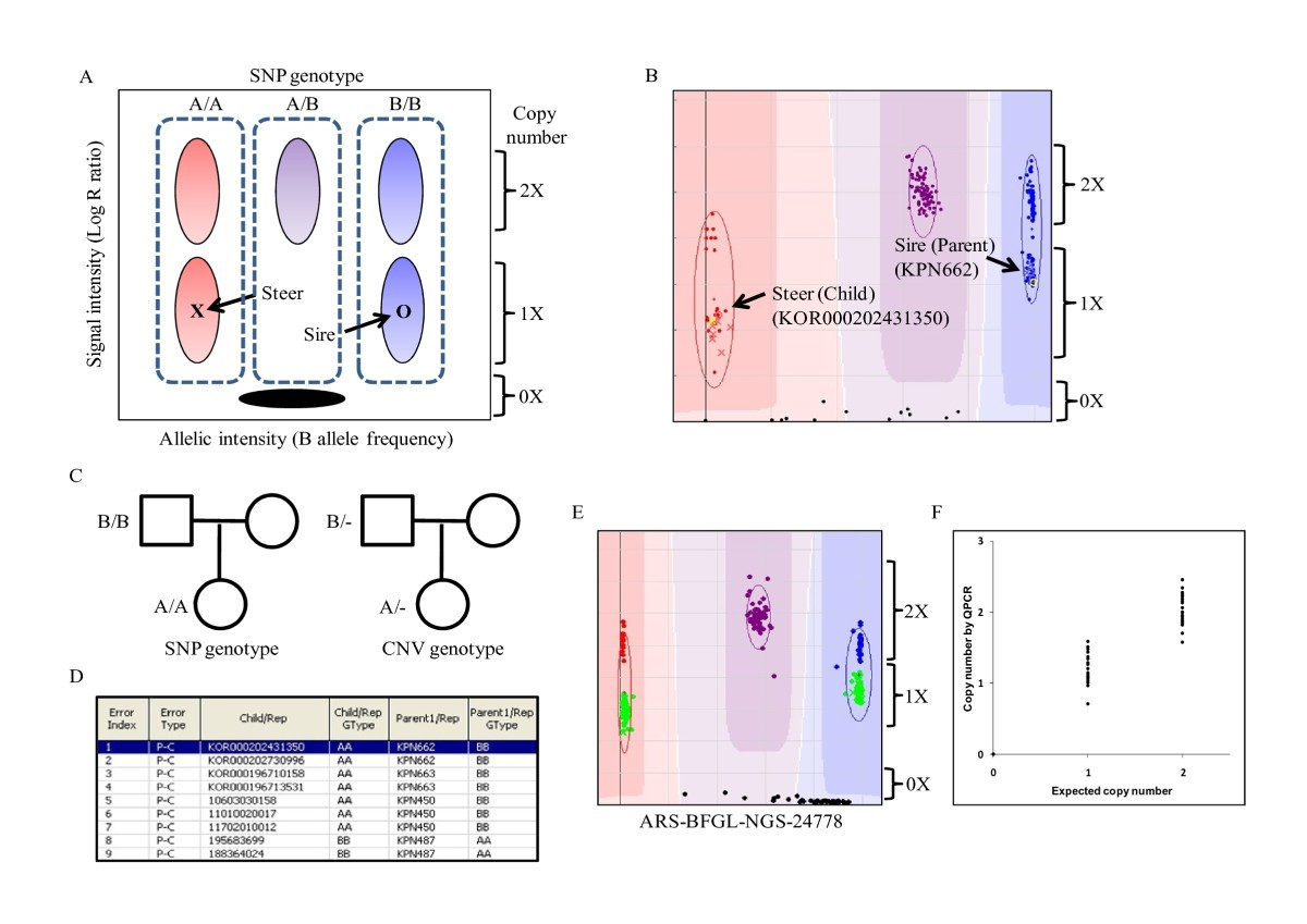 Identification Of Copy Number Variations And Common Deletion Taurus Schematics 740 Figure 4