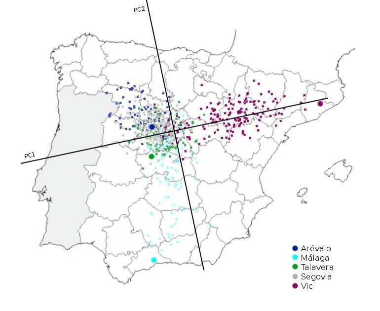 Genetic Structure Of The Spanish Population
