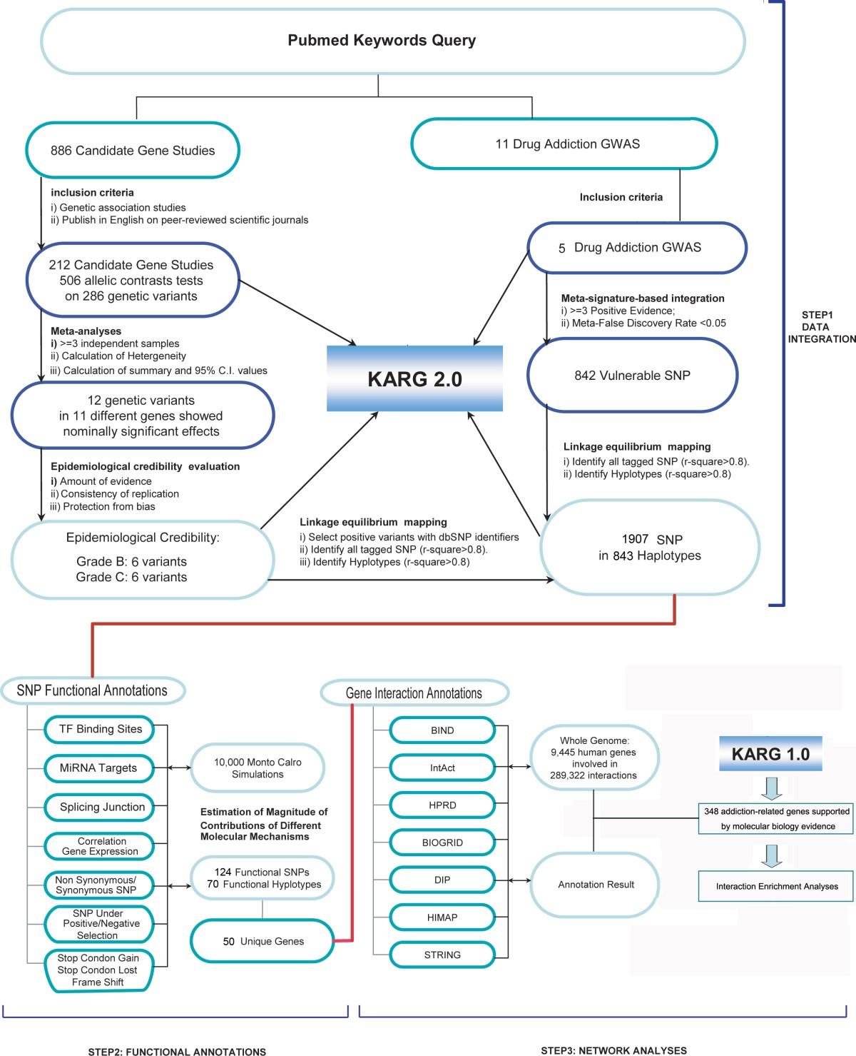 Meta Analysis And Genome Wide Interpretation Of Genetic
