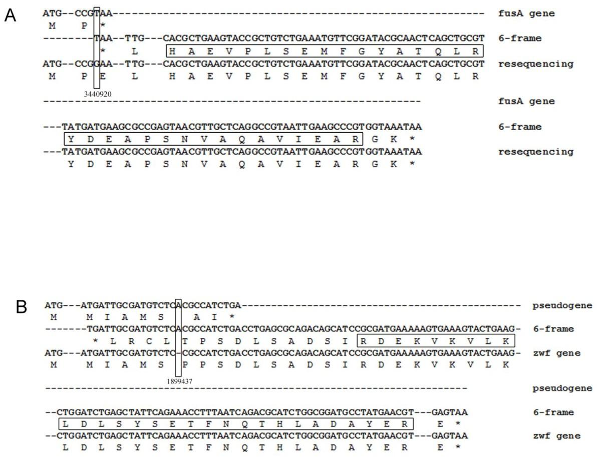 A proteogenomic analysis of Shigella flexneri using 2D LC