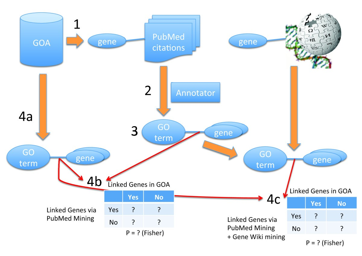 Mining the gene wiki for functional genomic knowledge bmc genomics figure 7 ccuart Choice Image