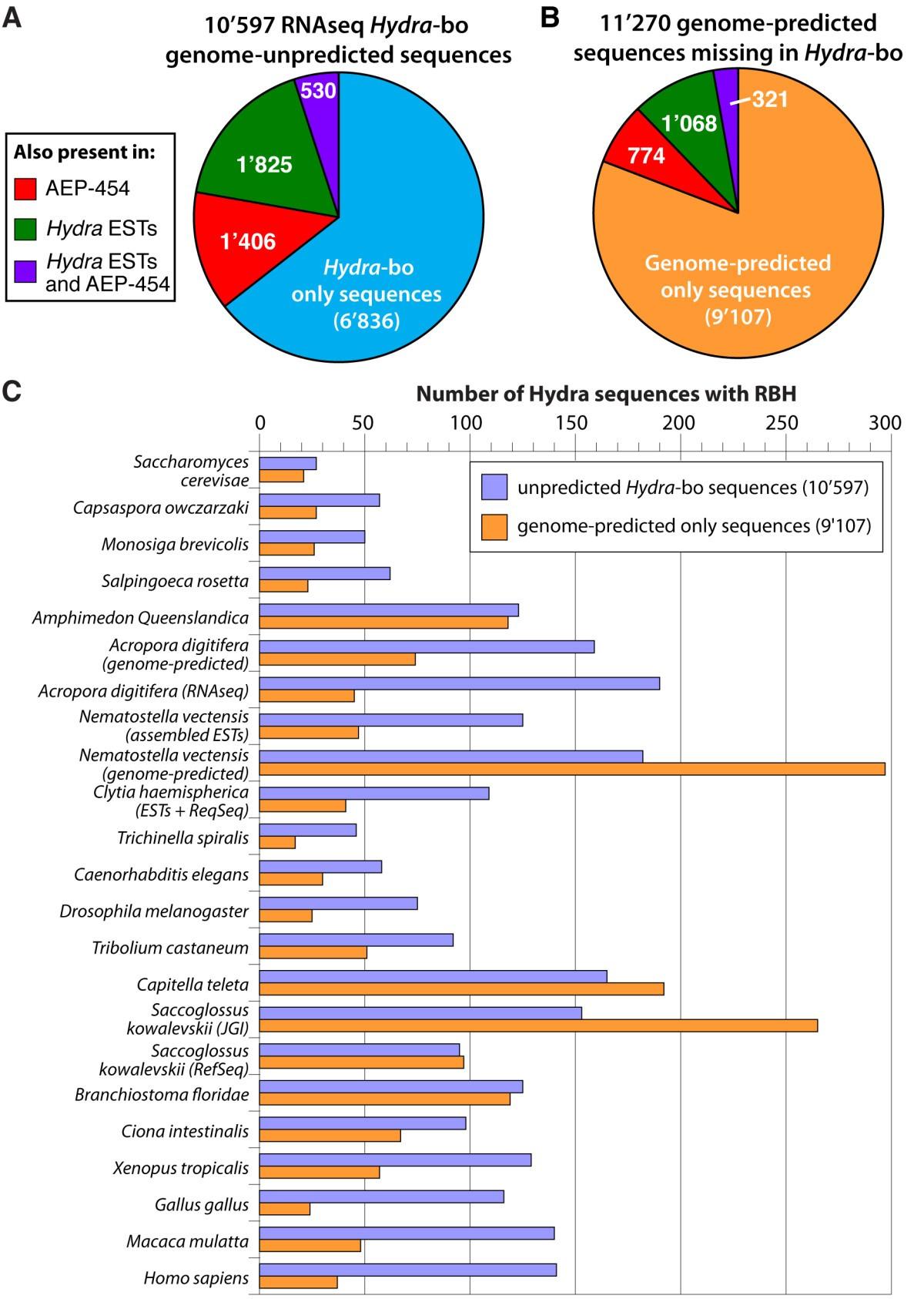 Rnaseq Versus Genome Predicted Transcriptomes A Large Population Of Hydra Biology Diagram Coelenterate Figure 6