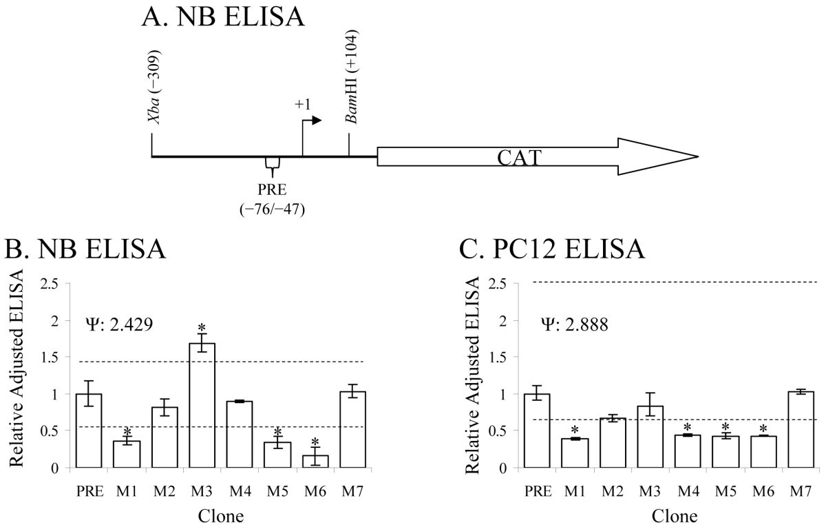 Puf An Antimetastatic And Developmental Signaling Protein Tippmann Model 98 Schematic Figure 5