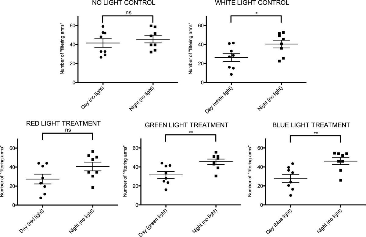 High Opsin Diversity In A Non Visual Infaunal Brittle Star Bmc Day Light Alarm Circuit Diagram Figure 3
