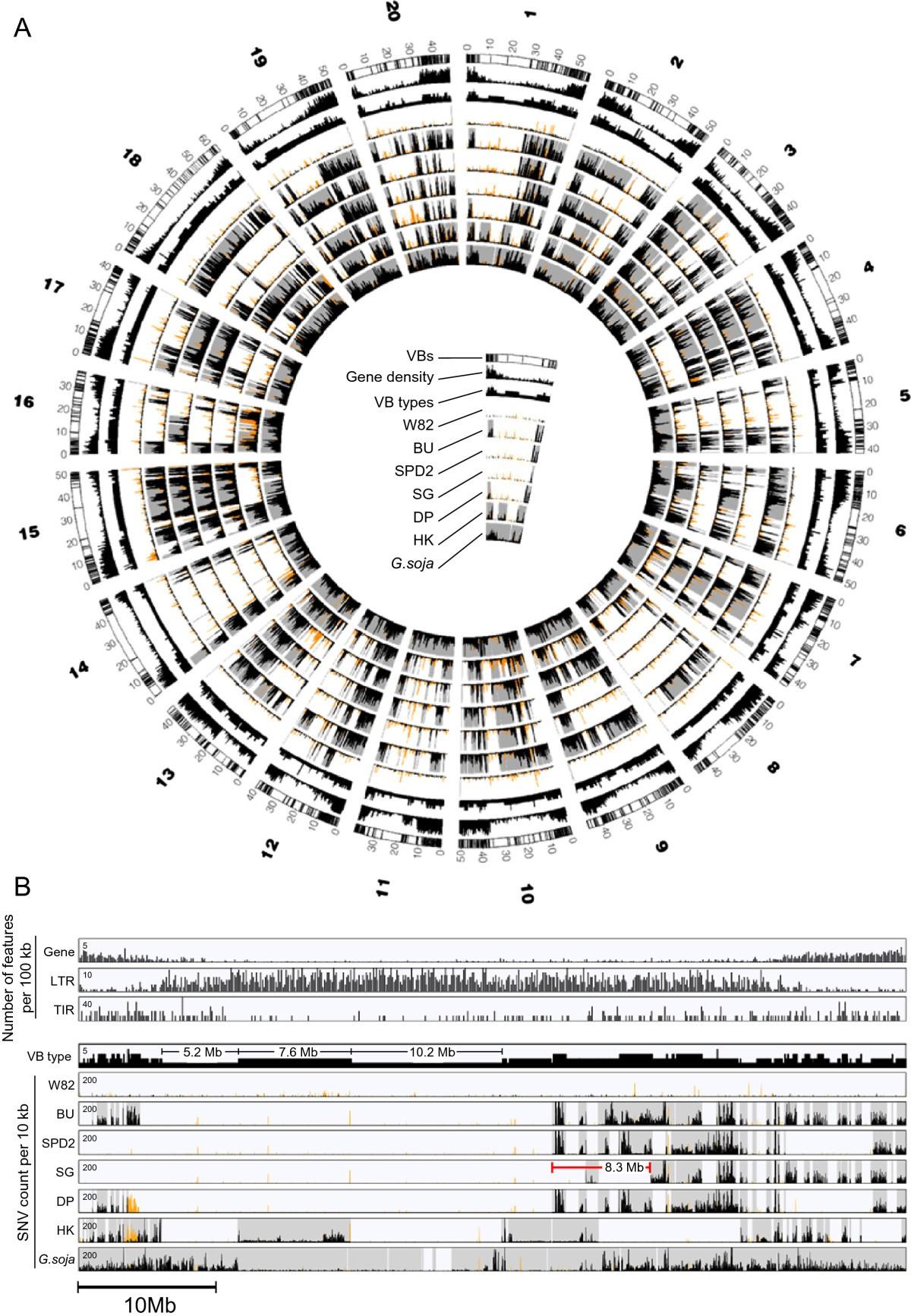 Variation Block Based Genomics Method For Crop Plants Bmc H 263 Diagram Figure 3