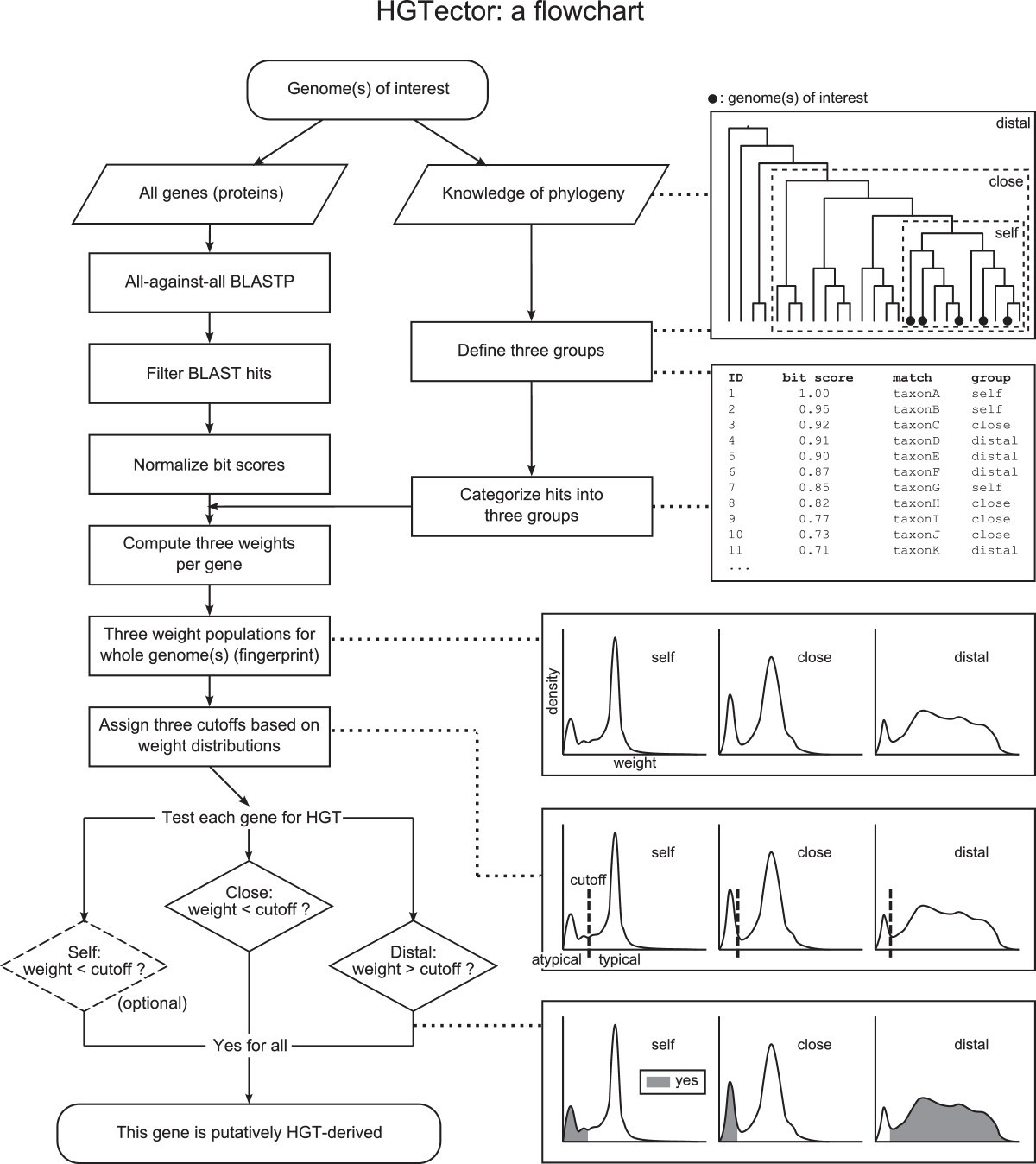 Hgtector An Automated Method Facilitating Genome Wide Discovery Of Sp Reguler Axis Hitz Figure 1