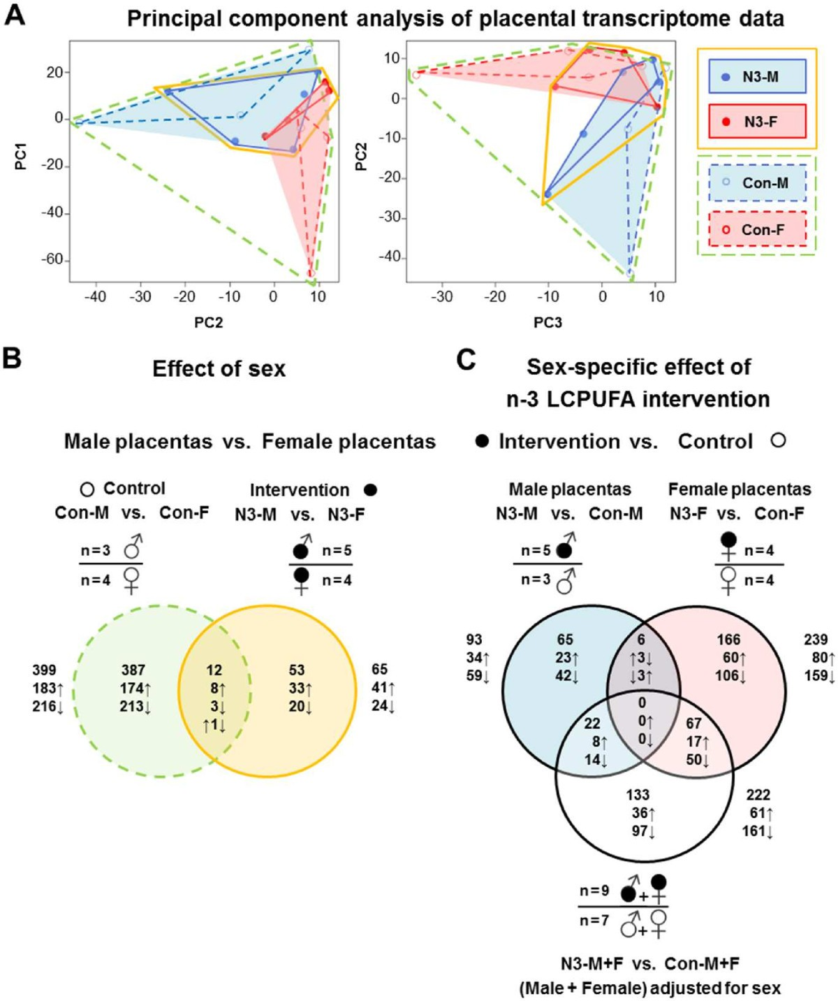 Human placental transcriptome shows sexually dimorphic gene