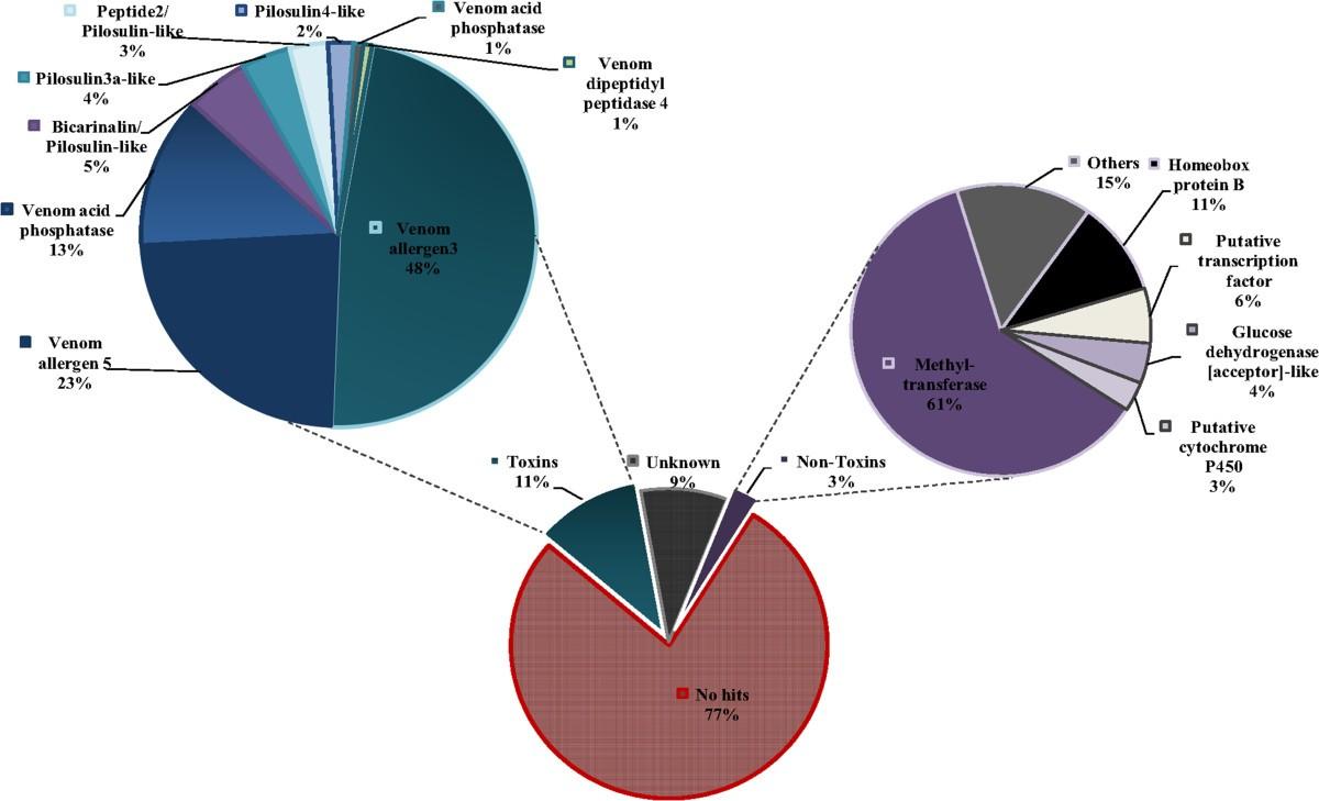 De Novo Sequencing And Transcriptome Analysis For Tetramorium 360 Degree Feedback Report Spider Diagram Figure 3