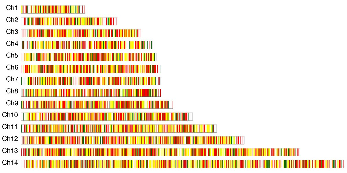 Cdna Sequences Reveal Considerable Gene Prediction Inaccuracy In The