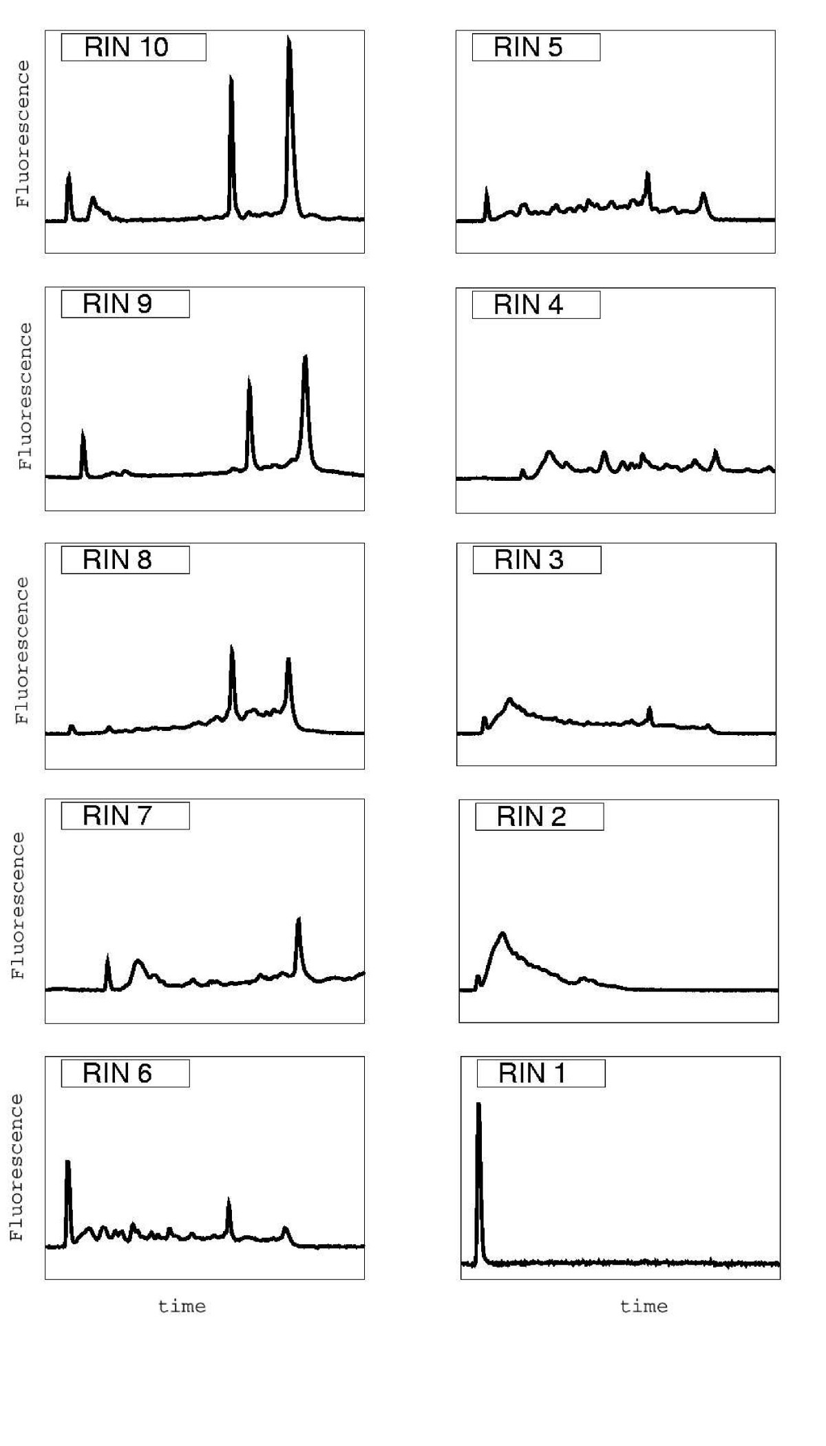 The RIN: an RNA integrity numb...