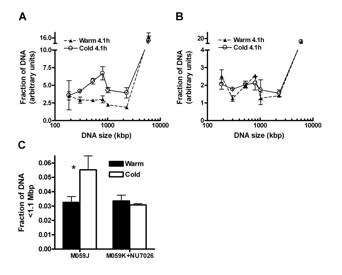 Extensive Ssdna End Formation At Dna Double Strand Breaks In Non 98 American Lafrance Wiring Diagram Figure 7