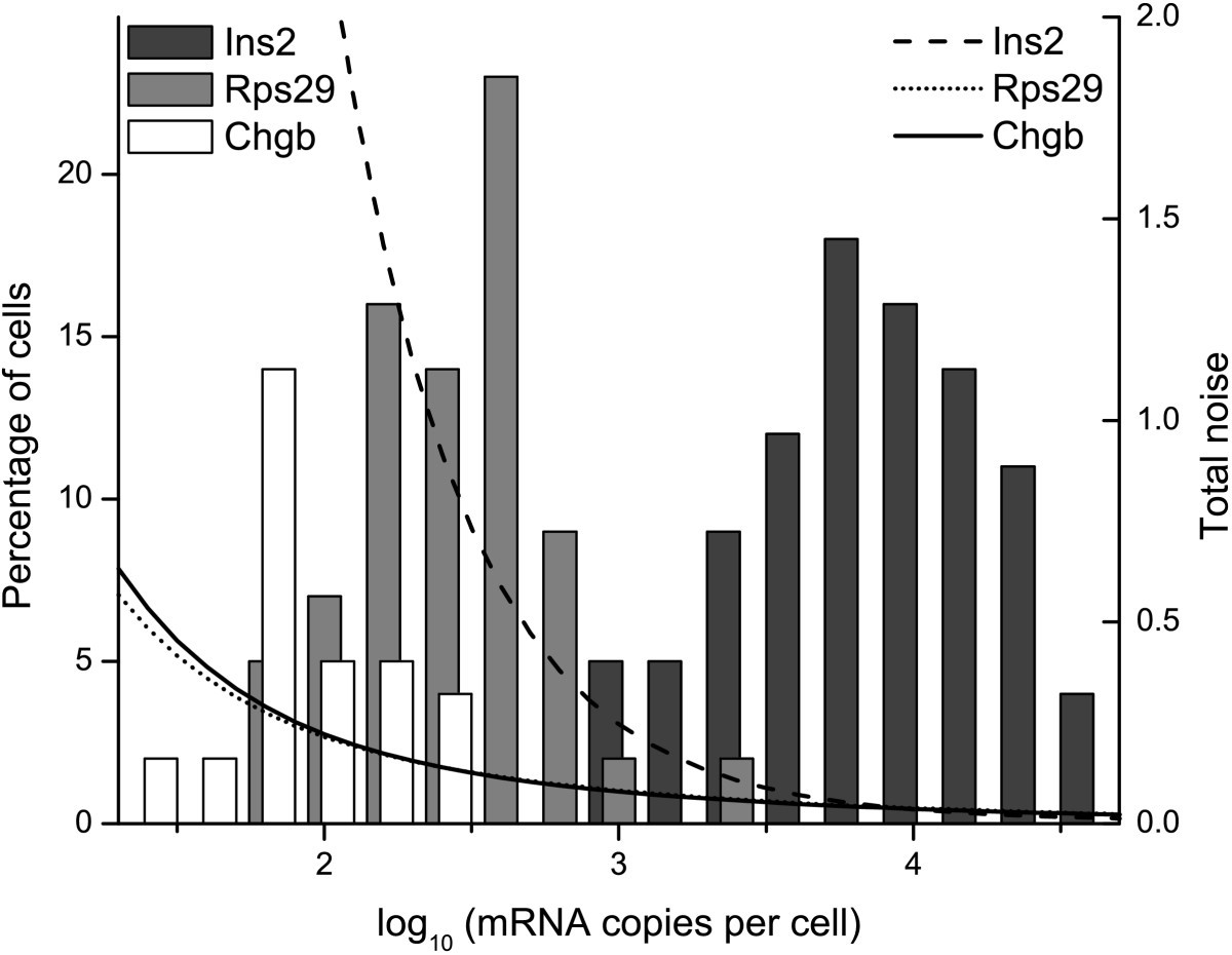 Quantification of mRNA in single cells and modelling of RT-qPCR ...
