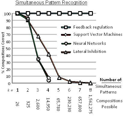 Evaluating the role of feedback regulation in recognition