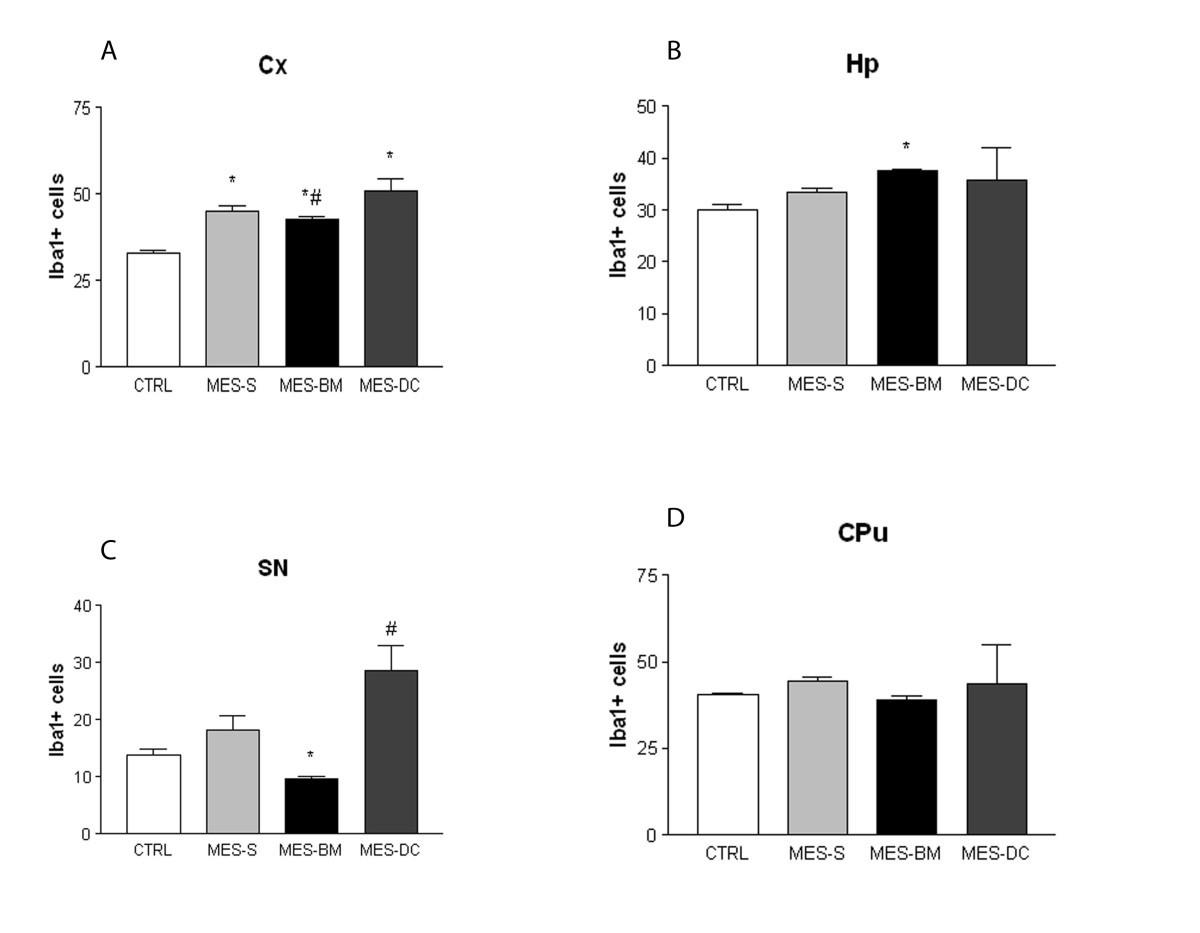 Anticonvulsant Activity Of Bone Marrow Cells In Electroconvulsive For Rafael Vasconcelos Some Wiring Diagrams Figure 3