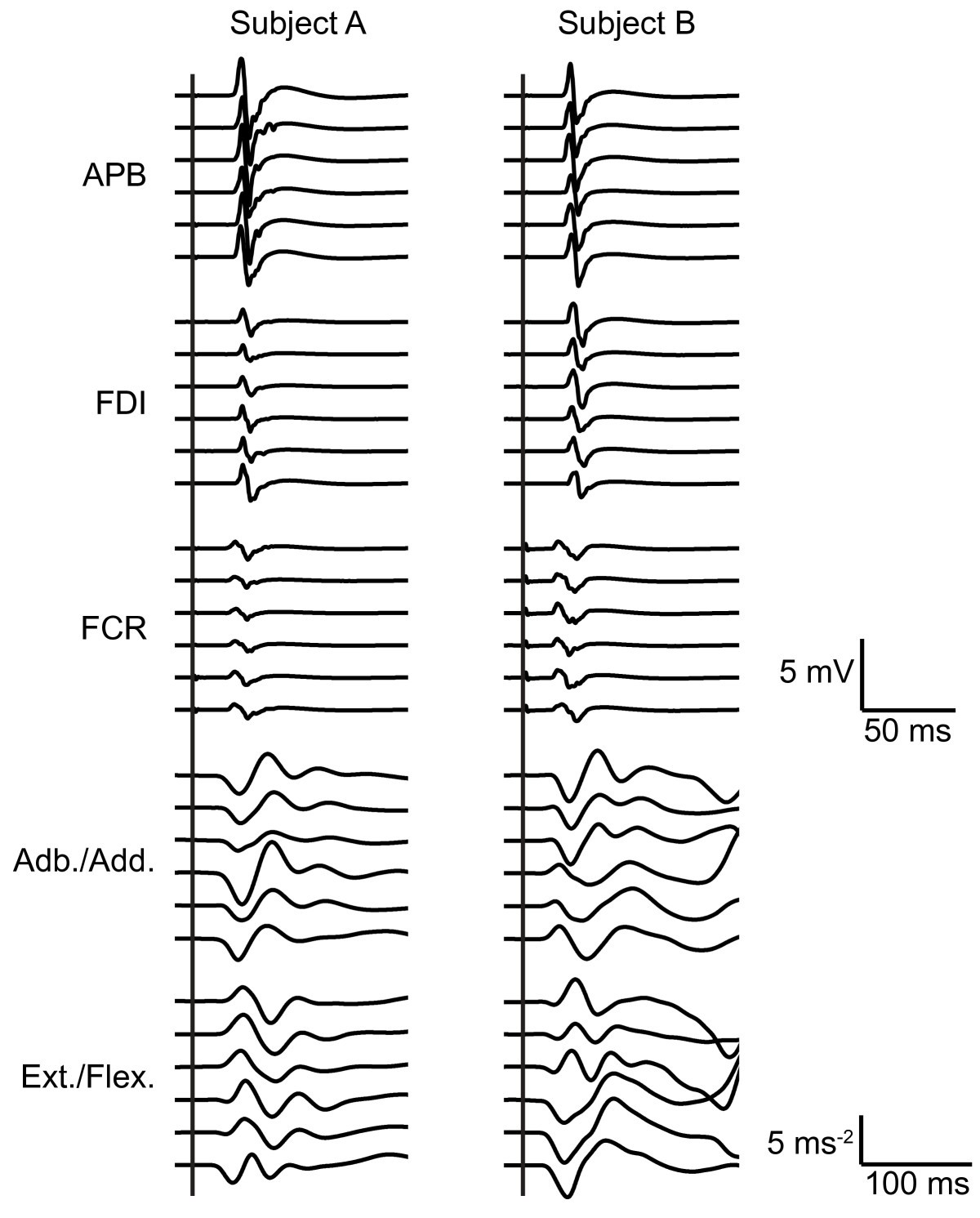 changes in corticospinal excitability and the direction of evoked movements during motor