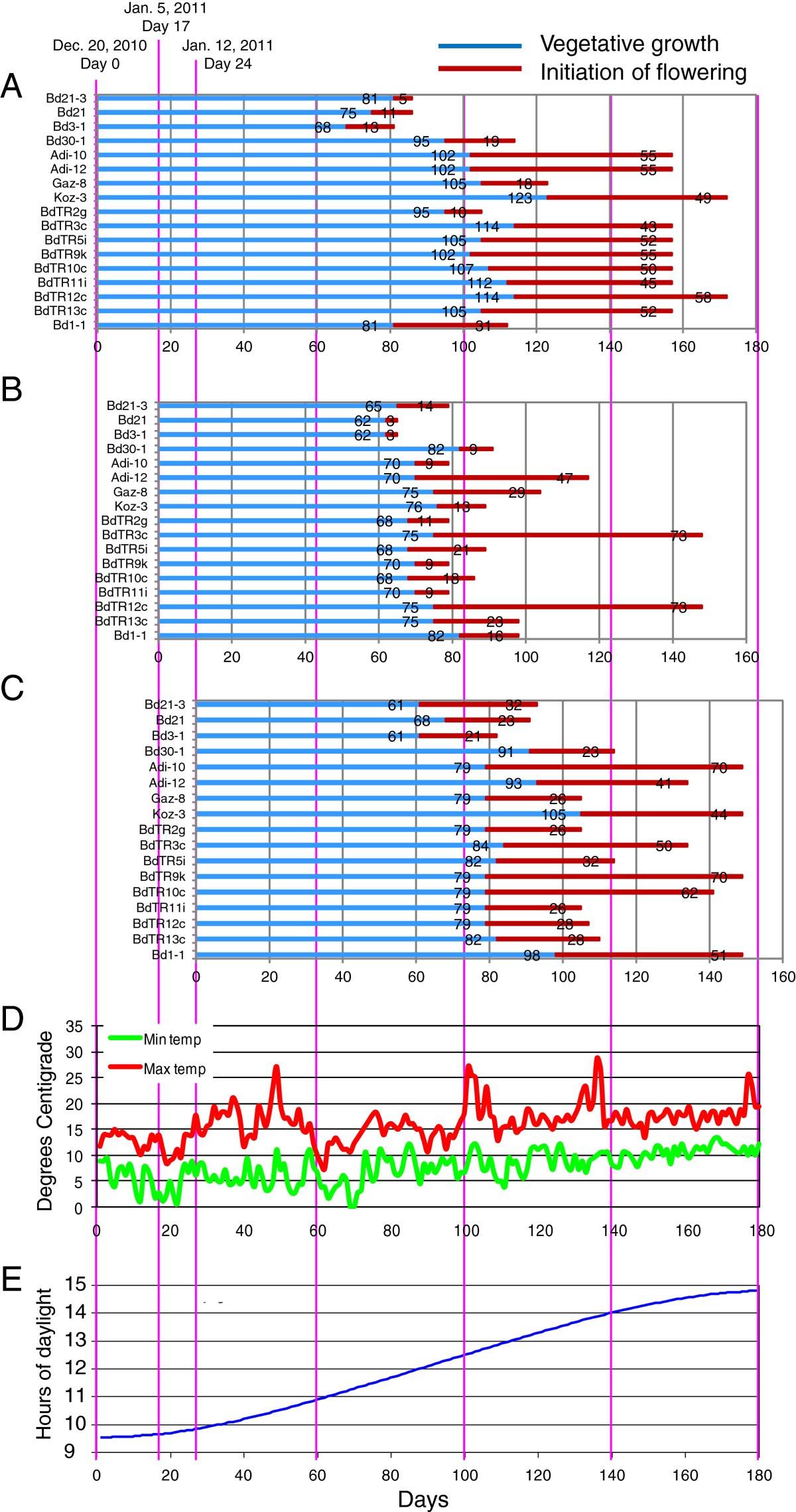 Selection And Phenotypic Characterization Of A Core Collection Of