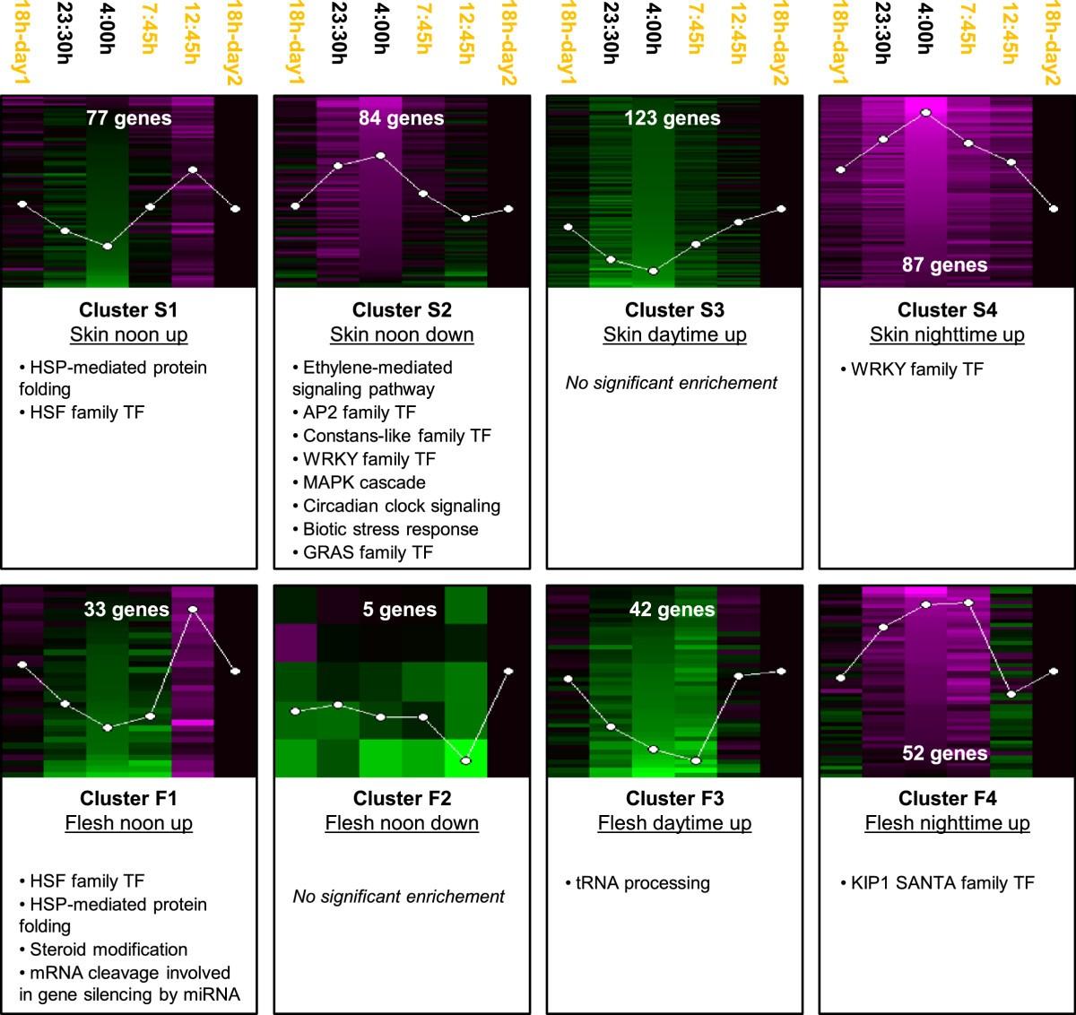 Circadian Oscillatory Transcriptional Programs In Grapevine Ripening Free Pcb Design Software Freepcb V1355 Figure 2