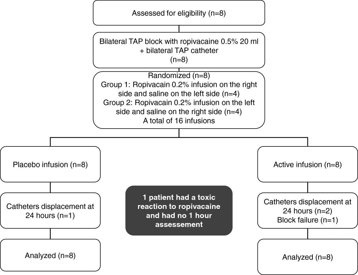 Bilateral transversus abdominis plane (TAP) block with 24 hours ...