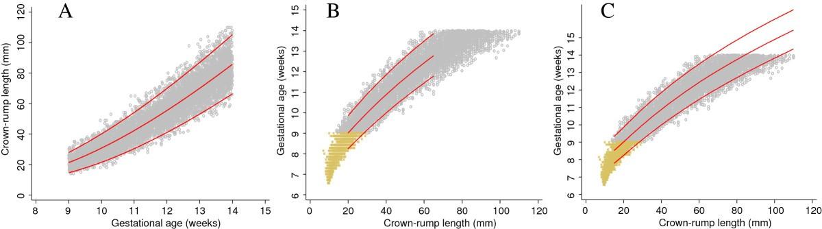 fetal crown rump length