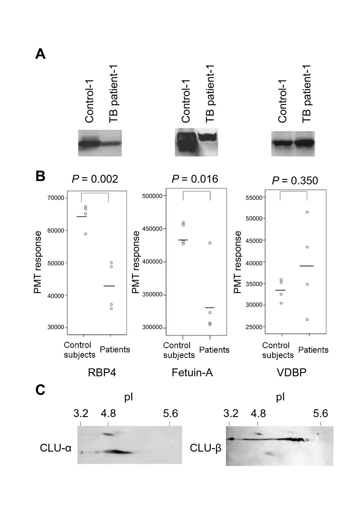 Identification of tuberculosis associated proteins in whole blood