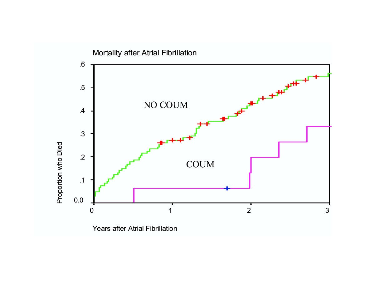 Atrial Fibrillation In Chronic Dialysis Patients In The United