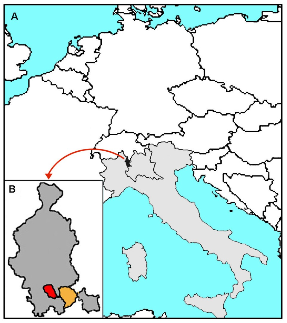 A Population-based study of dementia in the oldest old: the Monzino ...