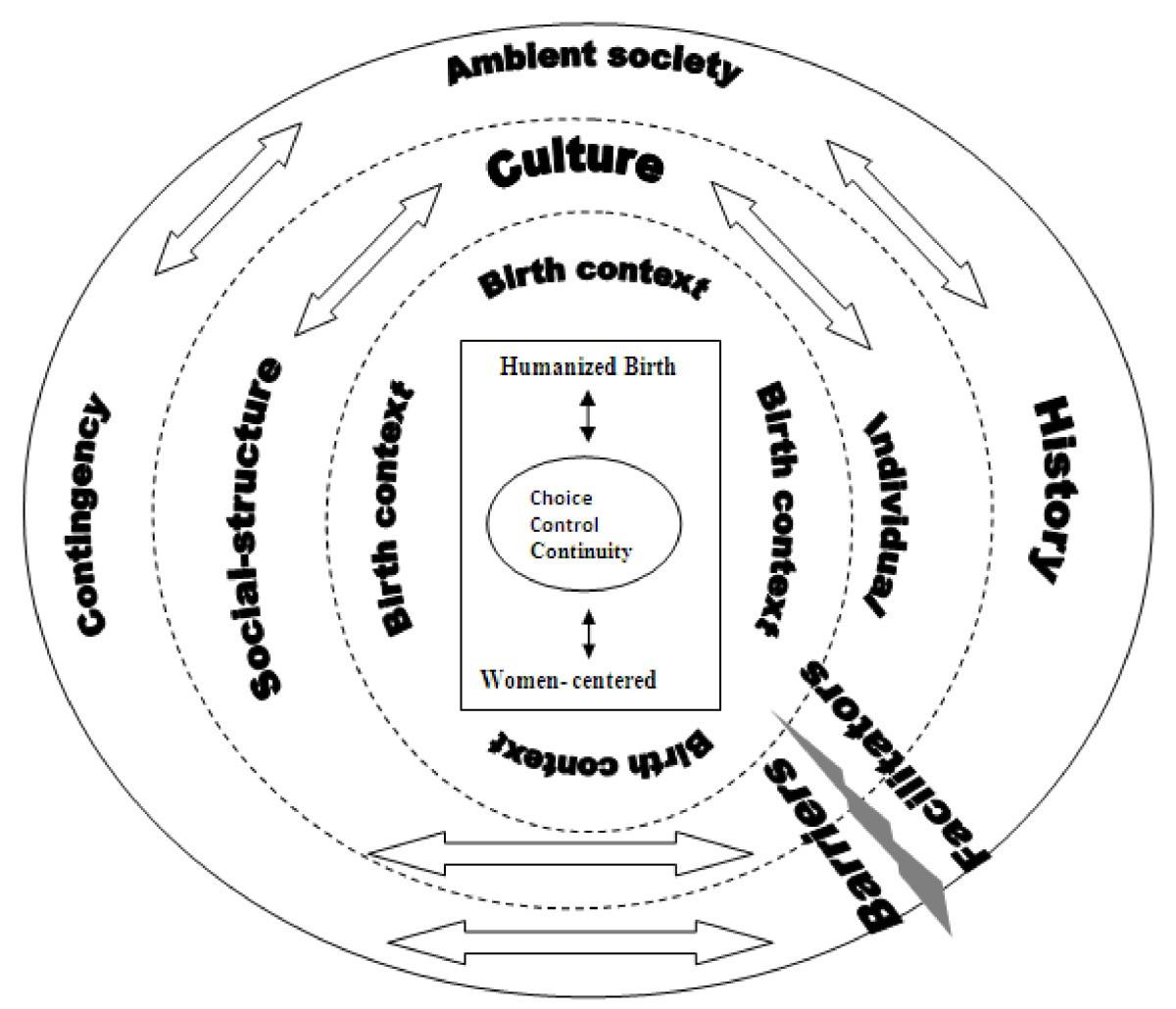 Understanding childbirth practices as an organizational ...