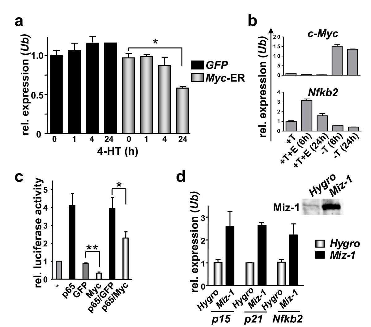 myc suppression of nfkb2 accelerates lymphomagenesis