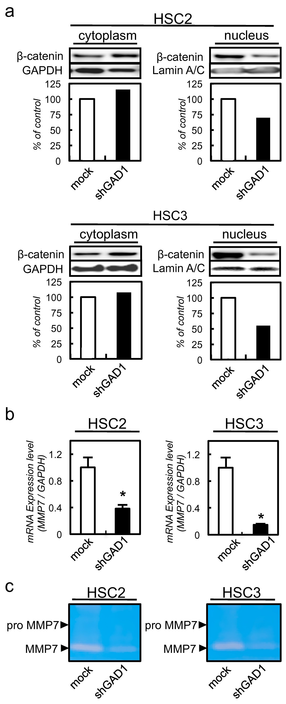 Glutamate Acid Decarboxylase 1 Promotes Metastasis Of Human Oral Tac 48 Refrigeration Wiring Diagram Figure 3