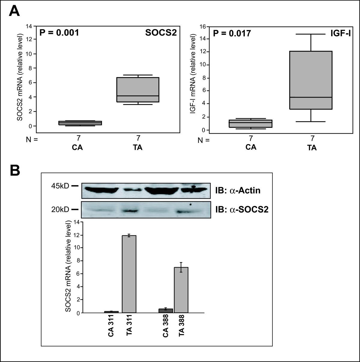 Favorable prognostic value of SOCS2 and IGF-I in breast cancer | BMC