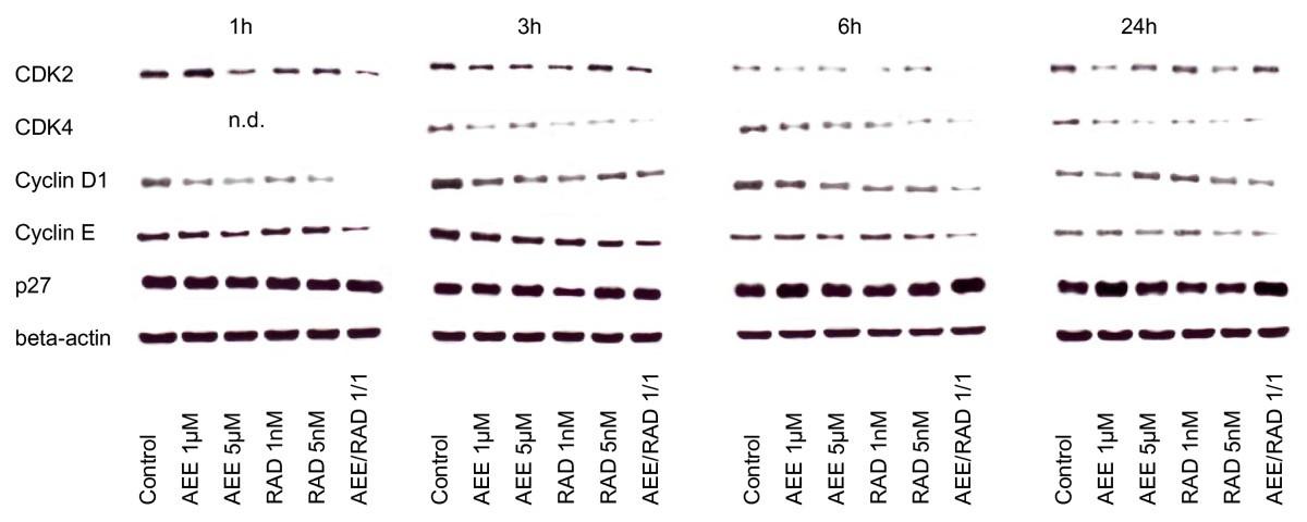 Combining the receptor tyrosine kinase inhibitor AEE788 and