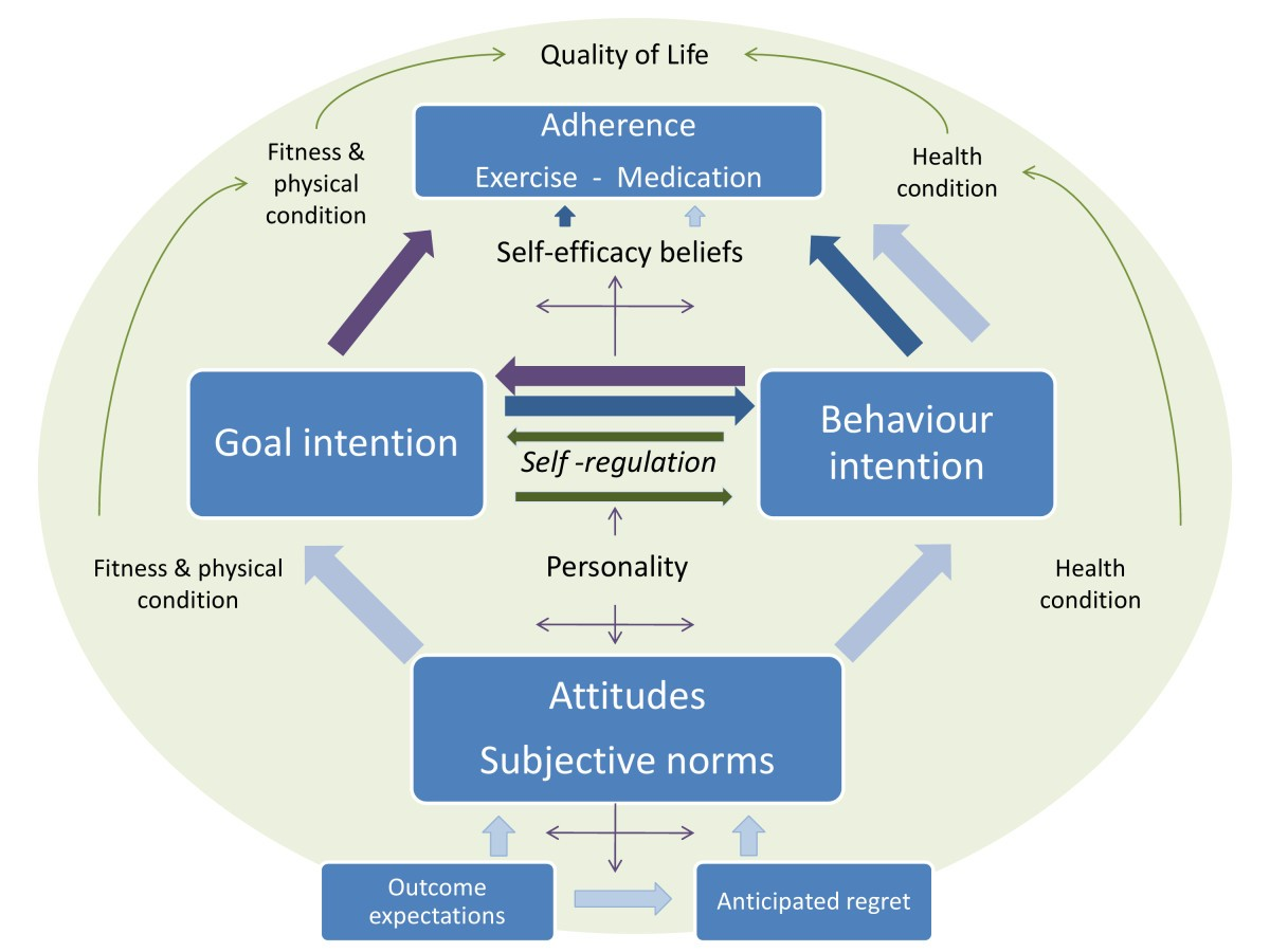 Understanding how adherence goals promote adherence behaviours: a ...