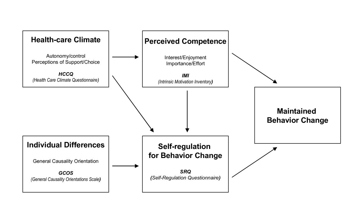 self determination theory examples
