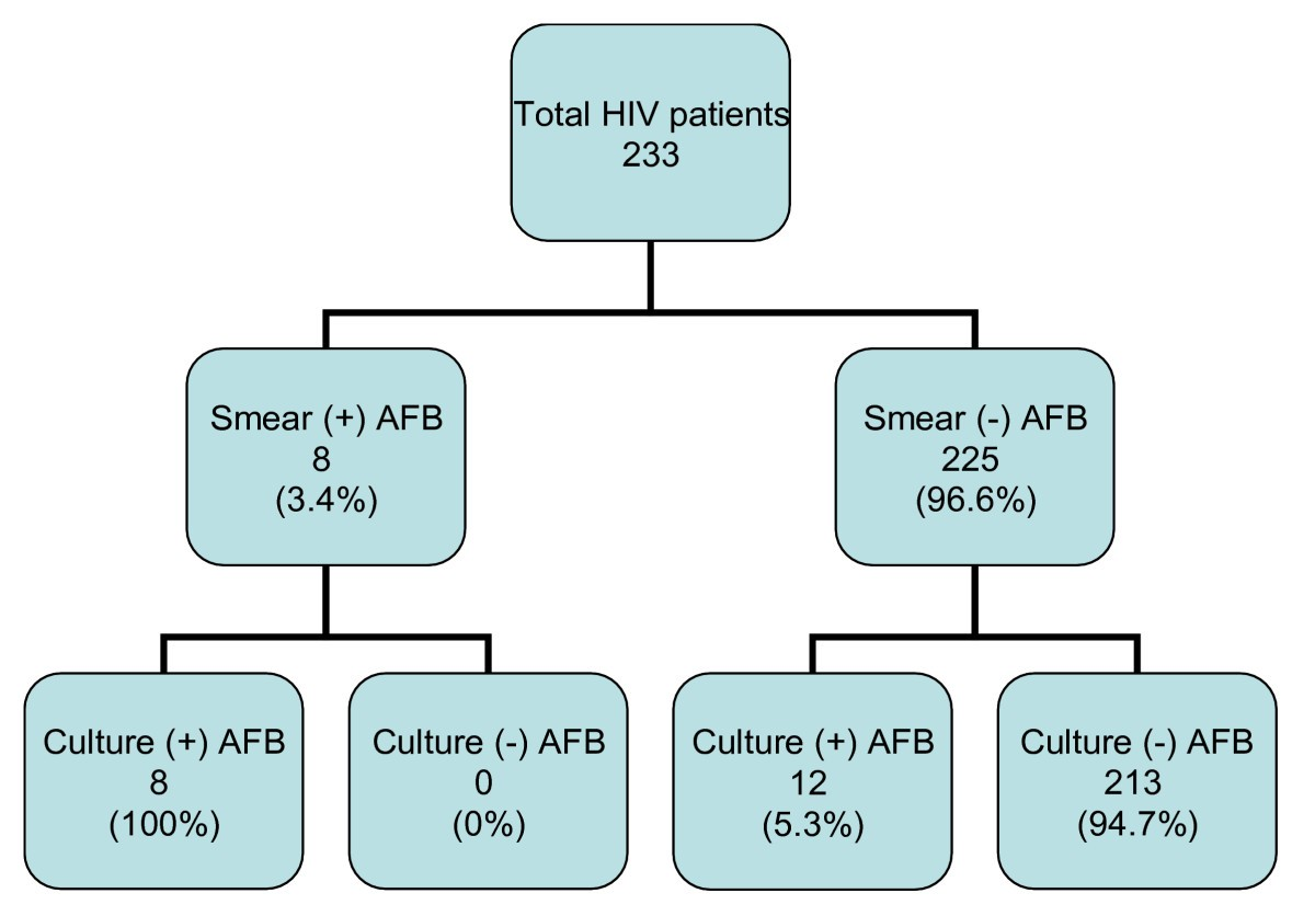 Pulmonary tuberculosis among people living with HIV/AIDS attending ...