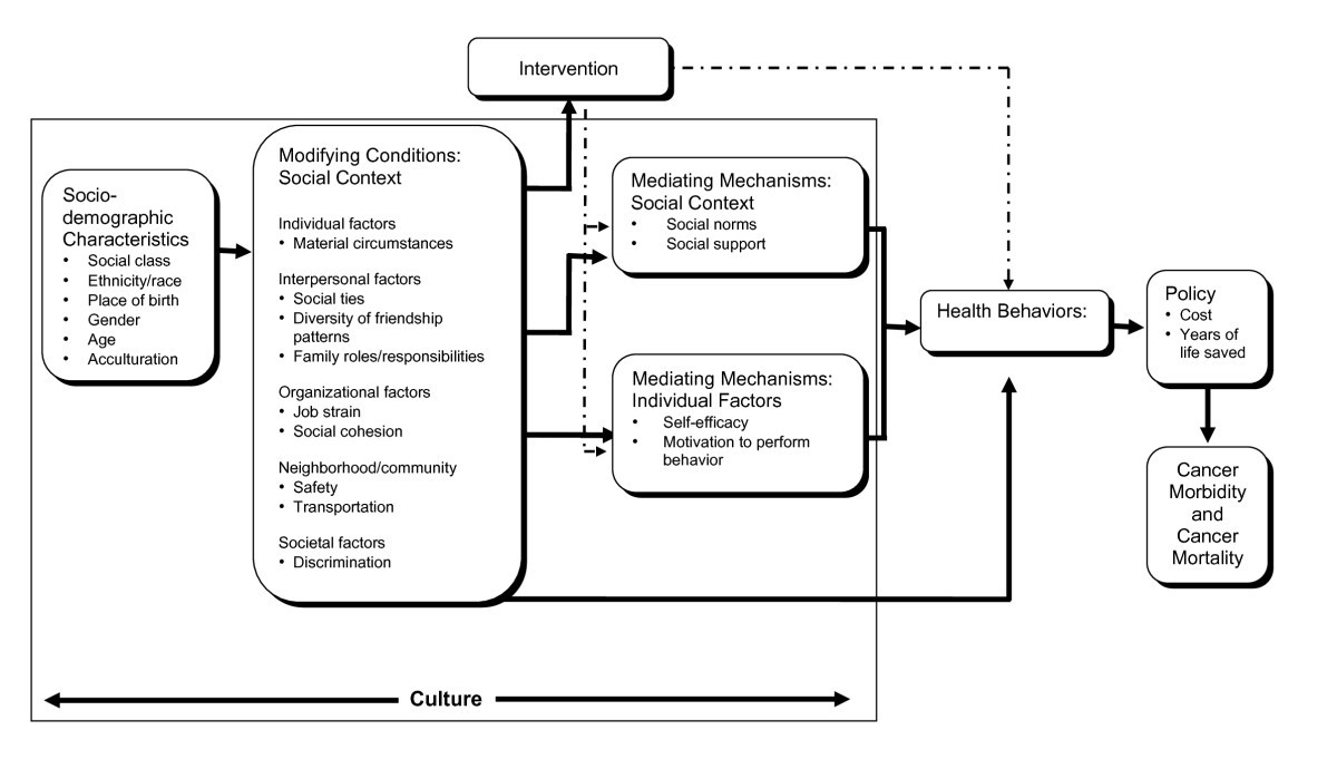 media influence on culturally safe health care article pdf