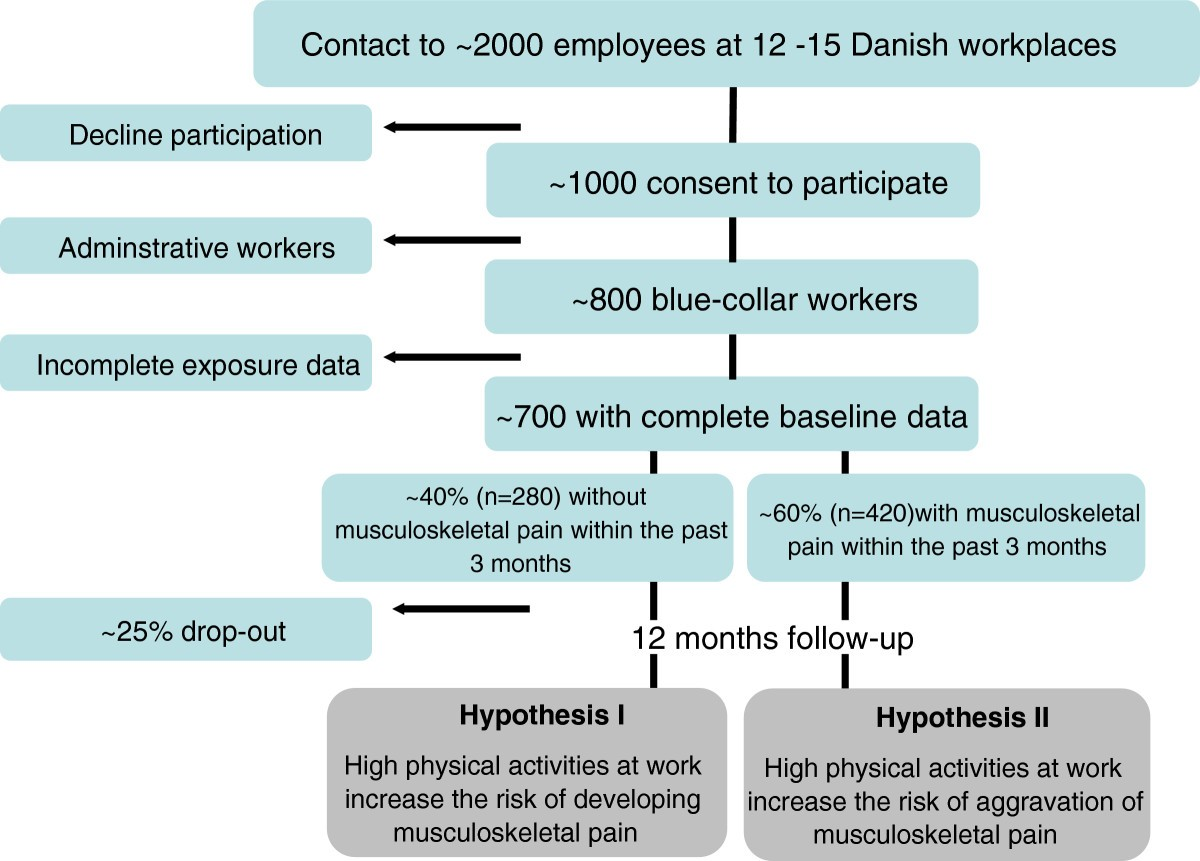 Physical activities at work and risk of musculoskeletal pain and its ...