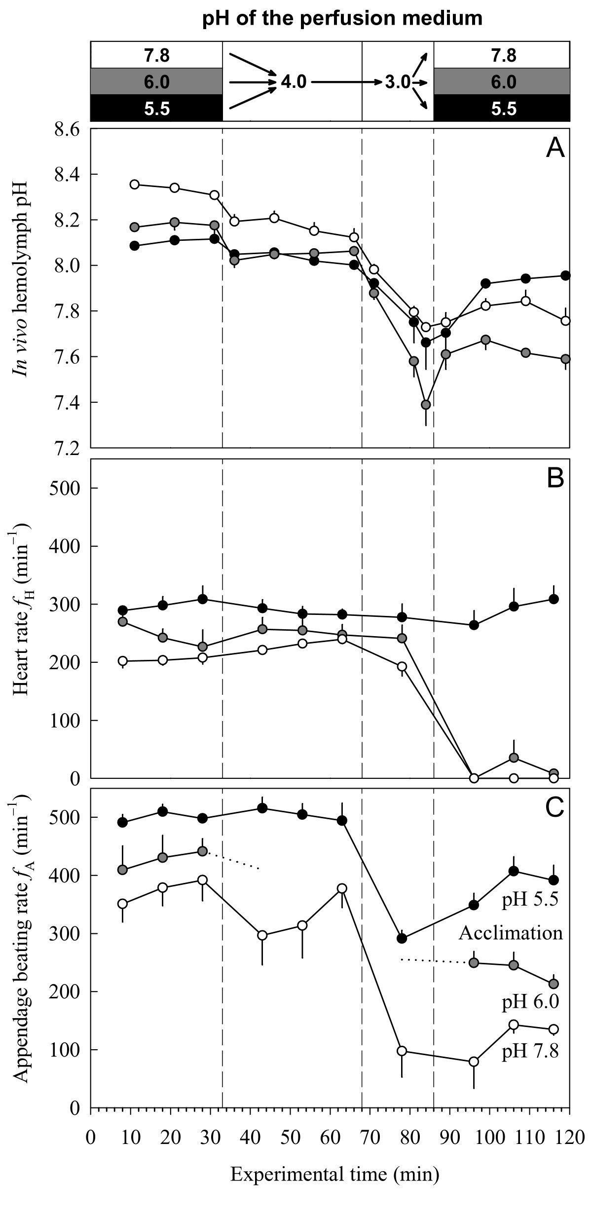 Physiological responses of Daphnia pulex to acid stress | BMC ...